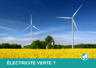 Electricité verte Wikipower